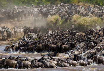 great migration 1