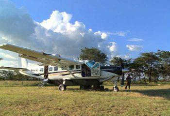 ngorongoro fly 1 small