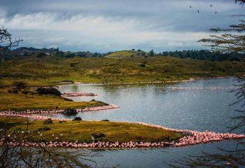arusha momela lakes